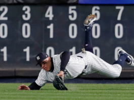 Judge makes diving catch